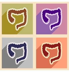 Icons of assembly duodenum in flat style vector