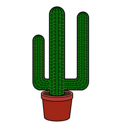 Isolated cactus image vector