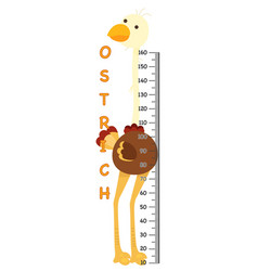 Meter wall with ostrich vector
