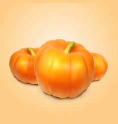 Realistic pumpkins on orange background vector