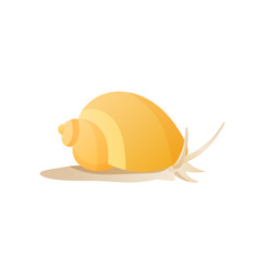 Snail isolated on white background poster vector