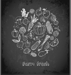card with doodle fruits and vegetables on vector image