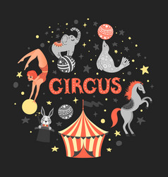 circus animal vector image