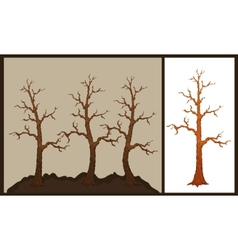 dry tree vector image