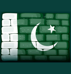 flag of pakistan painted on brickwall vector image