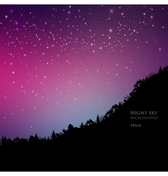 Pine trees on mountain sky night vector image