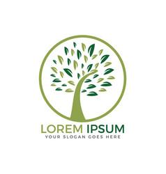 round tree logo design vector image