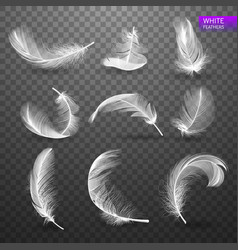 Set of isolated falling white fluffy twirled vector