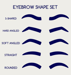 Female eyebrows shape set vector
