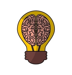 Human brain organ with bulb isolated icon vector