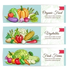 Organic vegetables food banner set vector