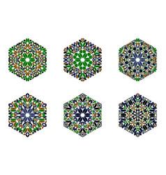 Ornate colorful flower ornament hexagon polygon vector