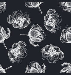 seamless pattern with hand drawn chalk tulip vector image