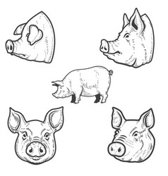 Set of pig pork head design element for emblem vector