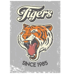 vintage grunge style of college poster of tiger vector image