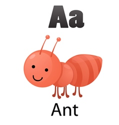 Alphabet A with ant vector image