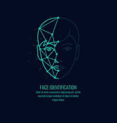 Biometric identifier of a person face vector