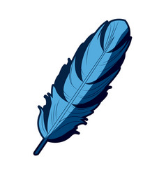 Blue feather free spirit rustic decoration ornate vector
