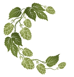 Curved branch of hops vector