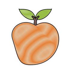Delicios apple fruit vector
