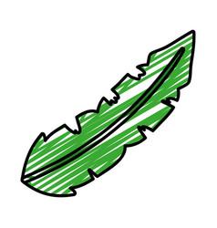 Doodle botanic exotic leaf natural style vector