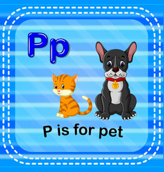 flashcard letter p is for pet vector image