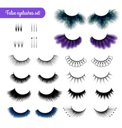 realistic false eye lashes set vector image