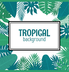 abstract background with tropical leaves in frame vector image vector image