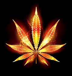 Cannabis fire leaf vector