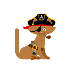 Cat pirate home pet buccaneer filibuster hat and vector
