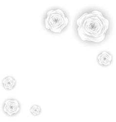 Decorative floral background with flowers of white vector image