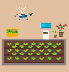 growing vegetables using solar energy box vector image
