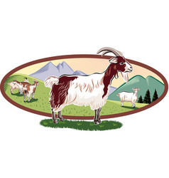 Oval frame with mountain landscape and goats vector