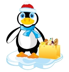 Penguin on block of ice vector image