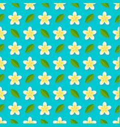 plumeria flowers on blue background seamless vector image