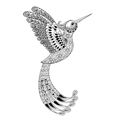 Zentangle hand drawn artistically Hummingbird vector image
