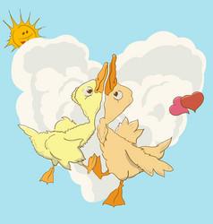 two ducks swirl in love dance vector image