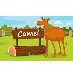 Zoo animal vector image vector image