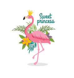 Cute cartoon pink flamingo queen with crown sweet vector