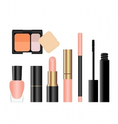 makeup collection vector image