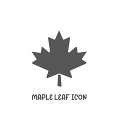 maple leaf icon simple flat style vector image