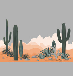 mexico pattern with opuntia agave and saguaro vector image