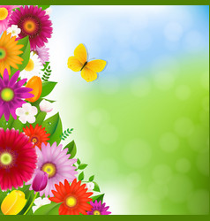 spring time postcard with butterfly vector image vector image