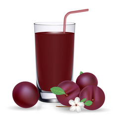 set of plum juice and fresh ripe fruits isolated vector image vector image