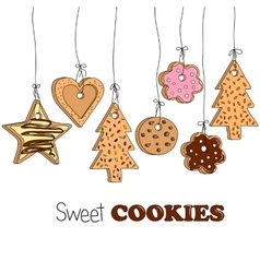 Different kinds of home made cookies vector image