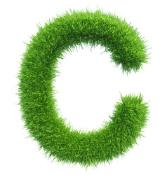 capital letter c from grass on white vector image vector image