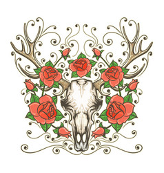 antler skull with rose flowers tattoo vector image