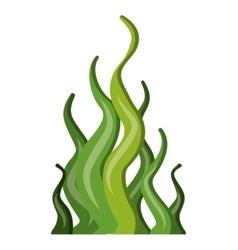 decorative algae aquarium isolated icon vector image