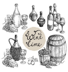 set of wine bottle and barrel grapes vector image