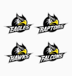 sport mascot set vector image